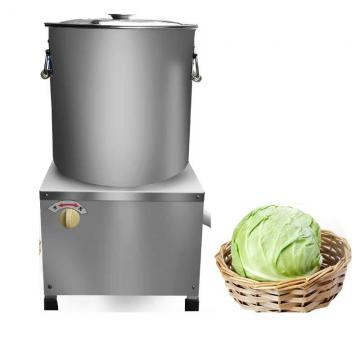 New Design Vacuum Dryer for Fruit